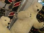 Ursi polari in euromall pitesti, craciun 2009